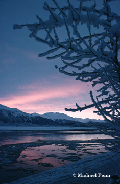 Haines Winter Sunset